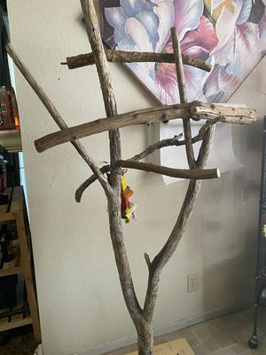 Bird perch stands for Sale in Las Vegas, NV