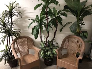 Chair and fake palms for Sale in Phoenix, AZ