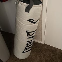 everlast punching bag for Sale in Garland,  TX