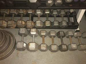 Dumbbell pairs for Sale in Tampa, FL