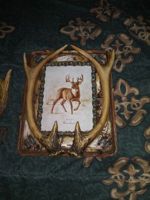 Picture frame for Sale in Castroville, TX