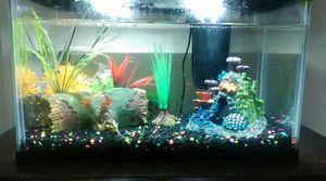 Fish tank for Sale in Moline, IL