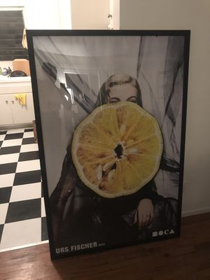 Lemon Photograph Artwork for Sale in Los Angeles, CA