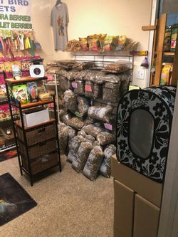 Exotic Bird Supplies for Sale in Fort Lauderdale,  FL