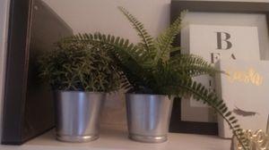 Ikea fux plants with pot for Sale in Phoenix, AZ