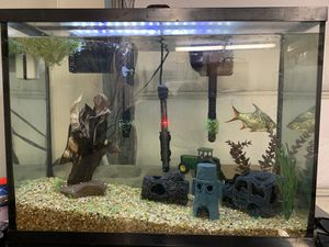 40gal fish tank everything included for Sale in Harrison, OH