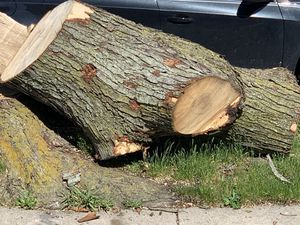 Free wood still available for Sale in Waterford Township, MI