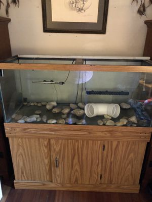 75 gallon fish tank and stand for Sale in Woodbridge, VA