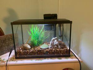 PERFECT CONDITION 5.5 gallon aquarium kit for Sale in Brookline, MA