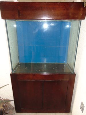 75 gal super thick glass fish tank, light, stand for Sale in Las Vegas, NV
