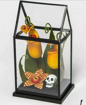 Halloween Hyde & Eek Boutique Yellow Creepy Face Faux Plants Terrarium for Sale in Cypress, CA
