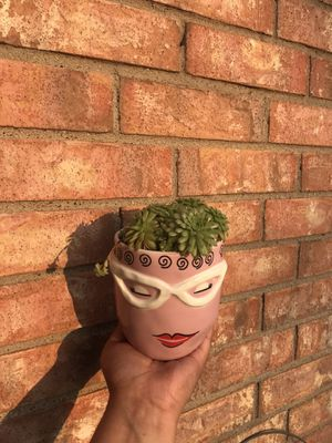 pink head planter succulent plant for Sale in Grand Prairie, TX