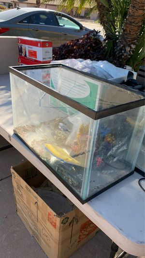 10 gallon fish tanks for Sale in Glendale, AZ