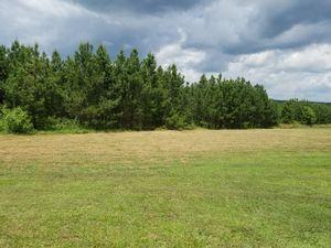 Hay for Sale in Phenix, VA