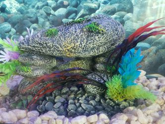 Fish Tank Decoration....new for Sale in Stockton,  CA