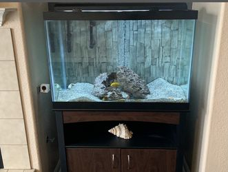 Complete Aquarium 65 Gallon With Lots If Extrad for Sale in Stockton,  CA