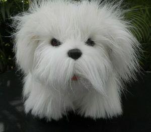 Go Go My Walkin' Pup for Sale in Miami, FL