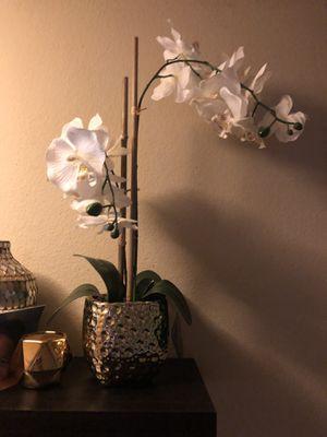Fake plant decoration for Sale in Everett, WA