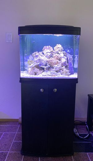Corallife biocube 28 gallon complete kit for Sale in Kent, WA