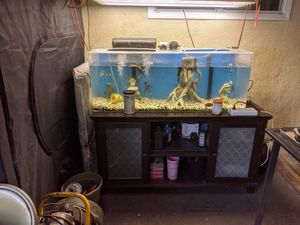 60 gal fish aquarium complete heater filters everything for Sale in Vernon, CA