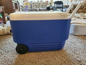 Igloo cooler for Sale in White Bear Lake, MN