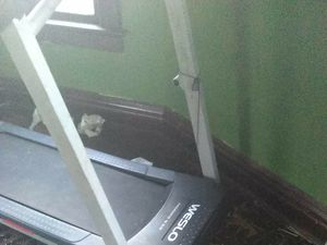 Treadmill for Sale in Evansville, IN