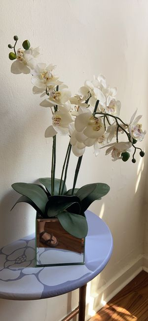 Fake Orchid Plant for Sale in Pittsburgh, PA