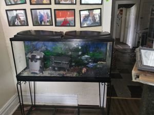 55 GAL FISH TANK W/METAL STAND for Sale in St. Louis, MO