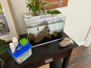 5 gallon fish tank plus extras for Sale in Miramar, FL