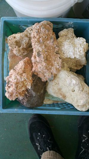 Base rocks for fish tank for Sale in Atlanta, GA
