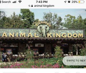Necesito Entradas para Animal Kingdom for Sale in Winter Haven, FL