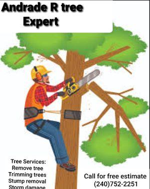Tree Expert for Sale in Hyattsville, MD