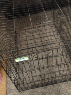 42-in Double Door Door Dog Kennel for Sale in Tacoma,  WA