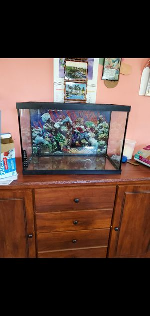 20 gallons Fish tank for Sale in Wheaton, MD