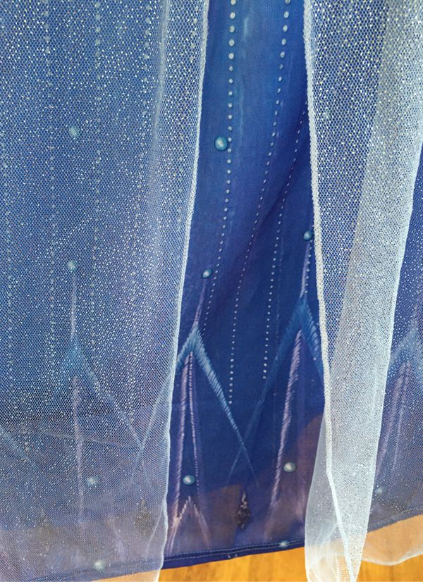 Elsa frozen 2 play dress up