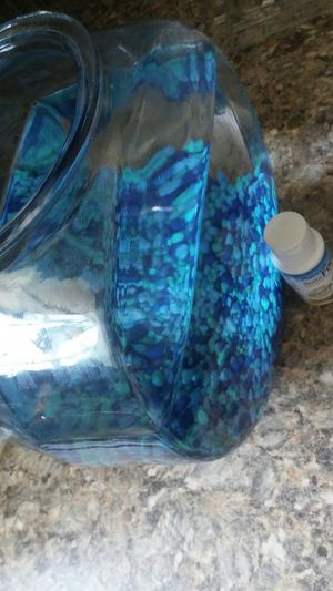 Classic 1 gal Fish tank w food/gravel for Sale in Tampa, FL