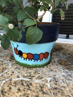 Hand Painted Orchid Pots. for Sale in Hialeah, FL