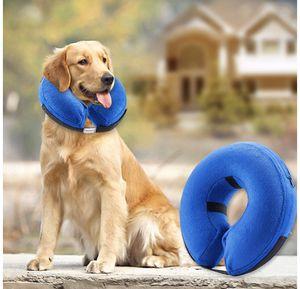 Dog collar for Sale in Corona, CA