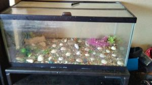 60 gallon fish tank for Sale in Phoenix, AZ