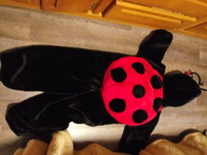 Halloween ladybug costume. for Sale in Salt Lake City, UT