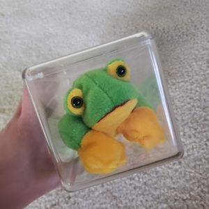 Smoochy Frog Beanie Baby for Sale in New Egypt, NJ