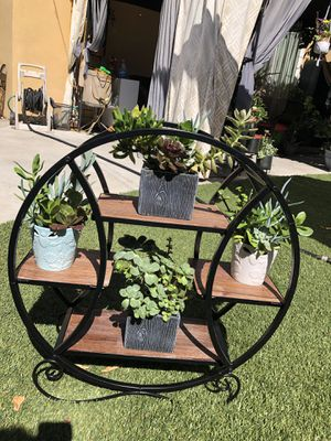 Very beautiful succulent arrangement with stand for Sale in Los Angeles, CA