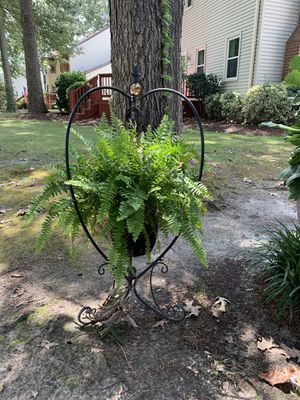 Two Black metal hanging plant stands for Sale in Chesapeake, VA