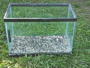 Fish tank &Rocks for Sale in Glendale Heights, IL