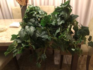 Fake plant for Sale in Arlington, TX