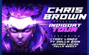 Chris Brown Tickets in an all inclusive suite for Sale in Tampa, FL
