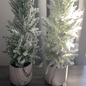 Two brand new flocked Christmas tree 24in for Sale in Rockville, MD