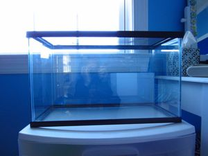 Tank with screen top for Sale in Aldie, VA
