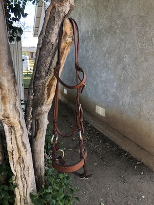 Side Pull Horse Bridle for Sale in Riverside, CA