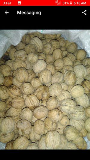 Walnuts for sale. for Sale in Hilmar, CA
